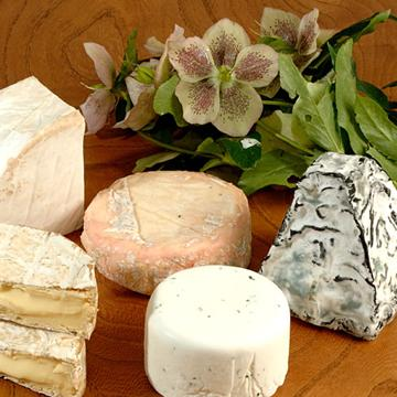 The Cheese Shed - The Big Softy